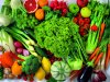 Fresh Vegetables wallpaper