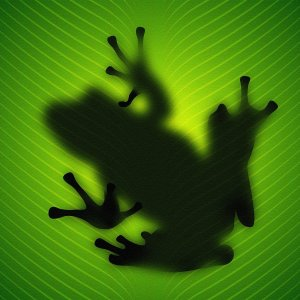 Frog Shadow wallpaper