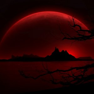 Red Night wallpaper
